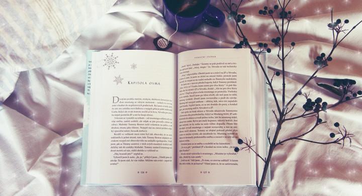 OBRÁZEK : kniha_vanoce.jpg